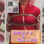 縄縛 初期サクラ&祭はっぴ娘 サークル:緊縛委員会