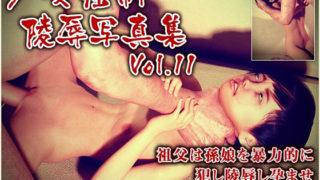 少女強制陵辱写真集 Vol.11 サークル:ポザ孕