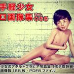 お手軽少女エロ画像集Vol.065 サークル:ポザ孕